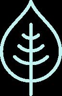 Icon of a leaf