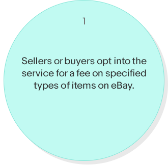 Sellers or buyers opt into the service for a fee on specified types of items on eBay.