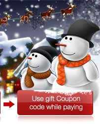 Use gift Coupon code while paying