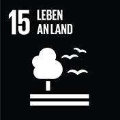15. Leben an Land