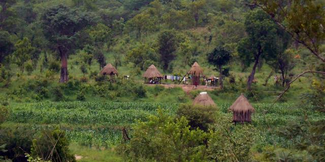 Ein Dorf in Simbabwe