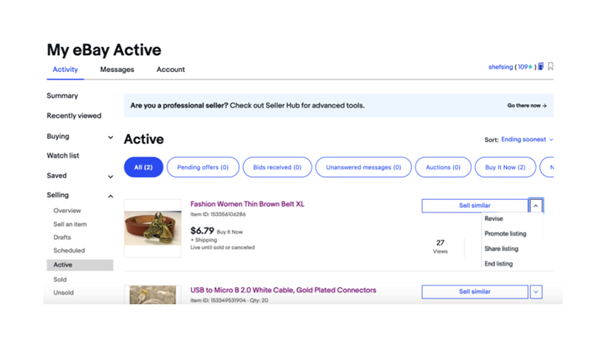 My eBay Active