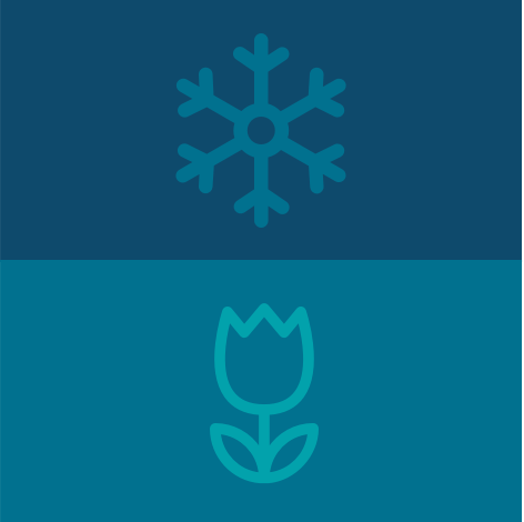 snowflake and flower