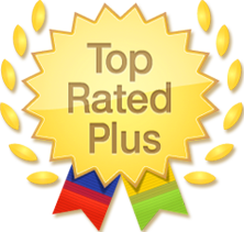 Ebay Top Rated Plus