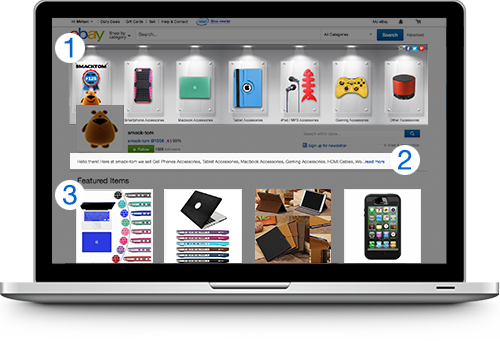 Online eBay storefront